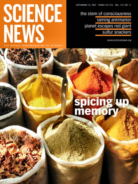 Curcumin, an active ingredient in the common kitchen spice turmeric ...